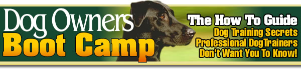 dog training Book, dog health Information, dog grooming, dog breeds, dog care, Offering an e-book resource for dog training, dog grooming, house training, and general pet care for all dog breeds.